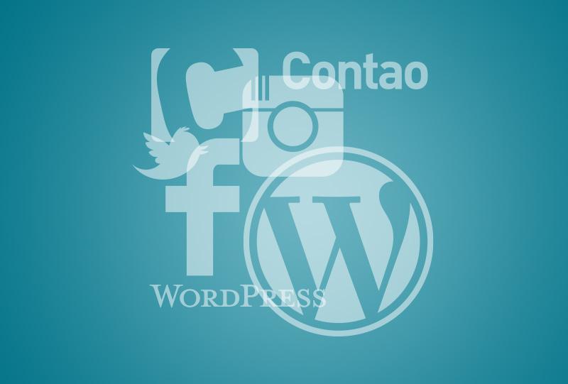 digital Wordpress contao Werbung